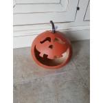 Zucca Halloween piccola