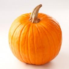 Halloween Grande
